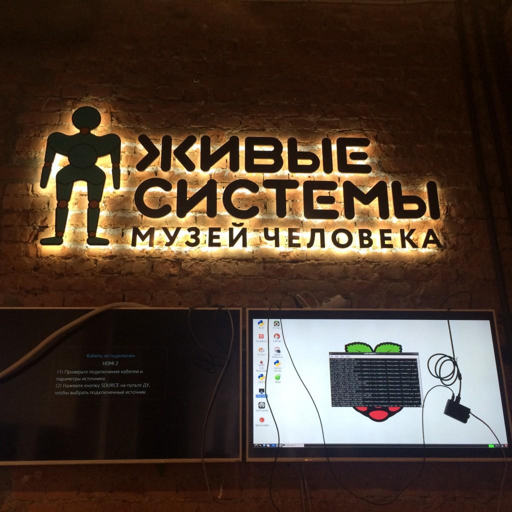 museum-display